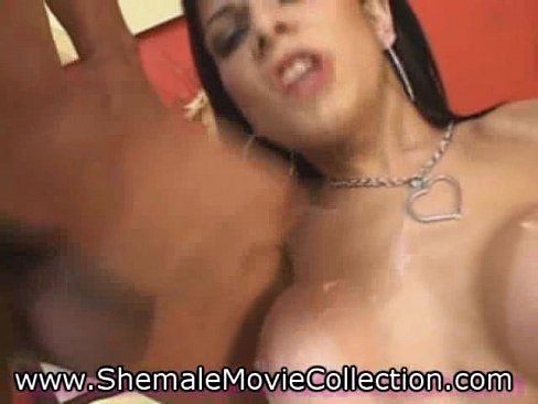 Www shemale movie collection com